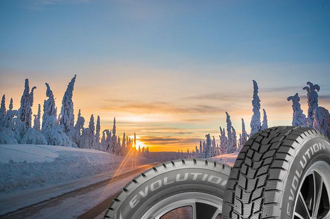Cooper Evolution Winter Tire